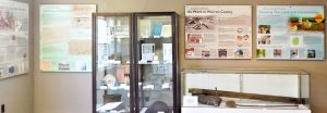 Warren county historical artifacts and materials